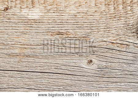 Texture of natural old weathered wooden board with crack lines, curves, swirls. Close-up. Vintage rustic background
