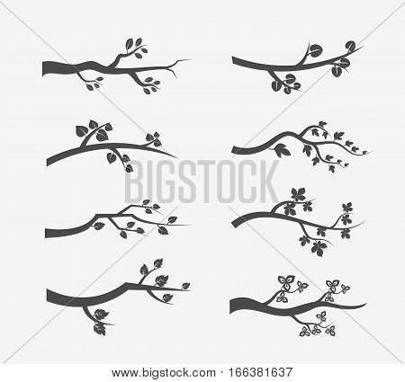 Vector tree branches silhouette with leaves. Set of branch tree illustration