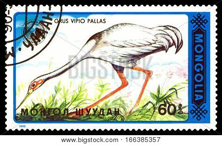 STAVROPOL RUSSIA - January 23 2017 : A Stamp sheet printed in Mongolia shows bird Grus Vipio Pallas circa 1990