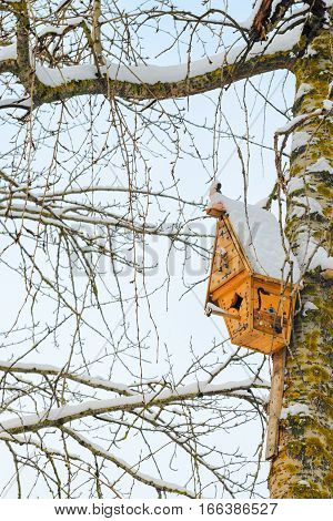 Modern Birdhouse on snowy park tree. Caring for wildlife concept