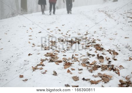 Dry yellow leaves covered with snow on a road with passers-by in distance