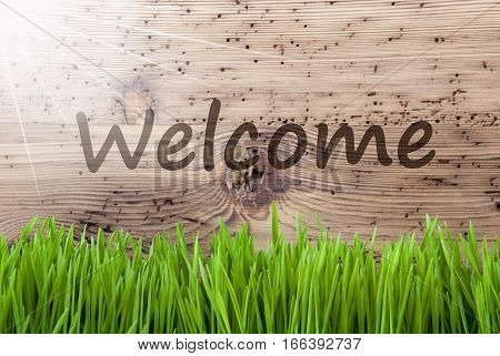 English Text Welcome. Spring Season Greeting Card. Bright, Sunny And Aged Wooden Background With Gras.
