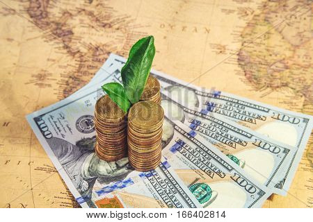 Green Plant Growing On Money Coins Under World Map Background