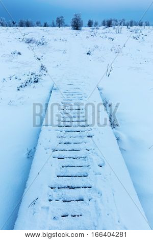 Planked Footpath In The Snowy High Vens, Belgium