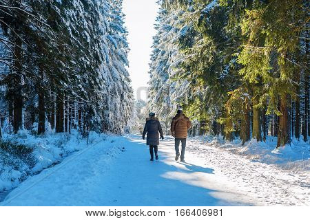 Couple Walking In A Snowy Forest
