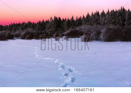 Winter Landscape At Dusk In The High Vens