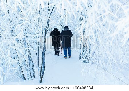 Couple Walking In A Snowy Landscape
