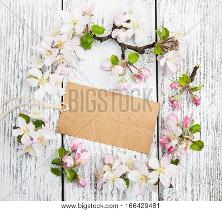 Apple Blossoms With Card