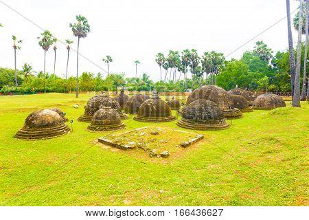 Jaffna Kandarodai Dagobas Stupas Site