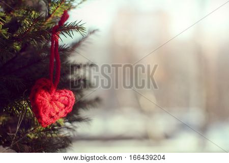 red heart symbol associated hand hanging on the tree / Valentine card gift
