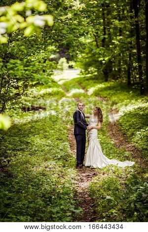 Groom and bride in the spring forest are walking along the forest path