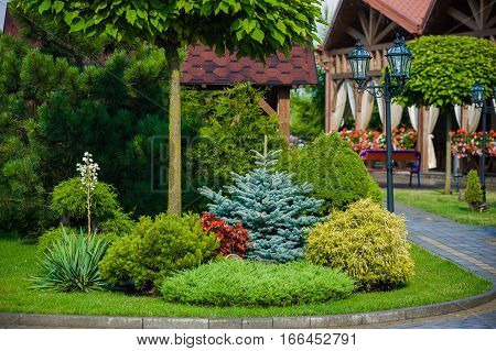 elements of landscape design. country house hotel. beautiful lawn with ornamental trees and benches