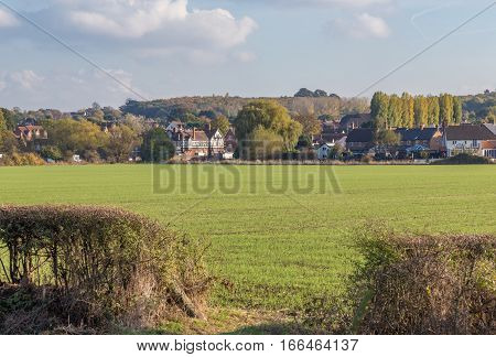 Essex countryside, field with green grass and an entrance in the hedge.  Village of Abridge in the background. Autumn shot of Essex farmland