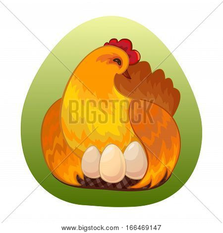 Best eggs design template. Eco farm quality concept. Chicken with eggs on nest. Vector illustration