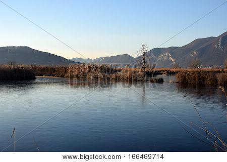 The rare phenomenon of the frozen bogs of Lake Iseo - Brescia - Lombardy - Italy