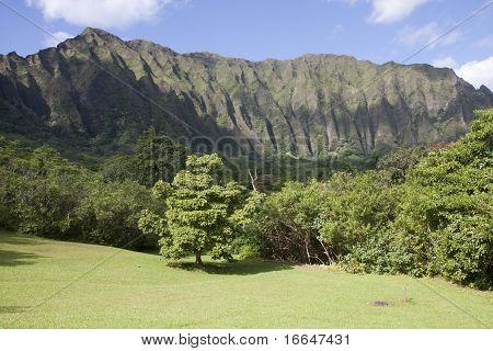 Ko'olau Mountain Landscape, Kaneohe, Hawaii