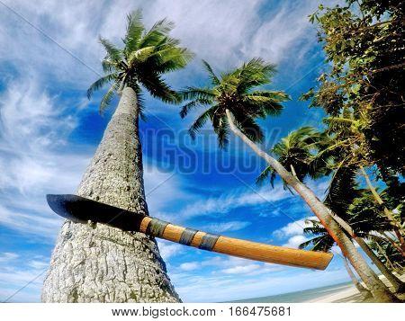 Fiji Machete