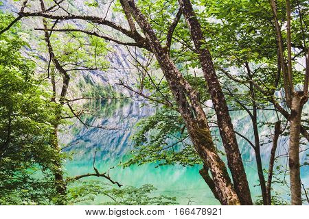 Obersee Lake With Clear Green Water Berchtesgaden National Park, Bavaria,  Germany