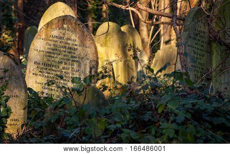 Cemetery: Forgotten Grave Stones
