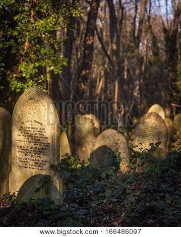 Cemetery: In Loving Memory