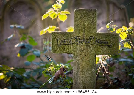Cemetery: Until The Day Dawns