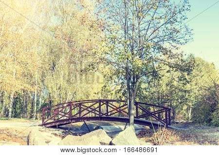Autumn Alley In Park With Bridge In The Sunny Day