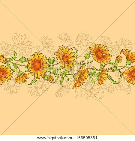 calendula flowers vector horizontal seamless pattern on color background