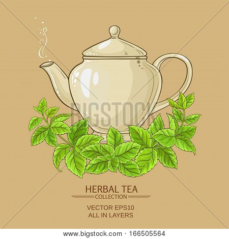 melissa tea in teapot  on color background