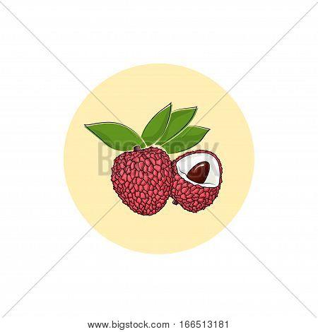 Lichee, Round Icon Colorful Lichi, Fruit Icon