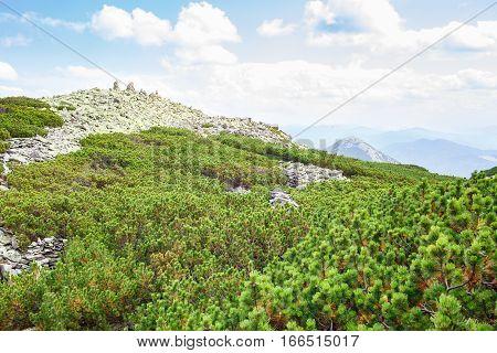 Peak of Synyak mountain in Carpathians Gorgany. Hillside landscape view with rocky peak , debris fields and green mountain pines.