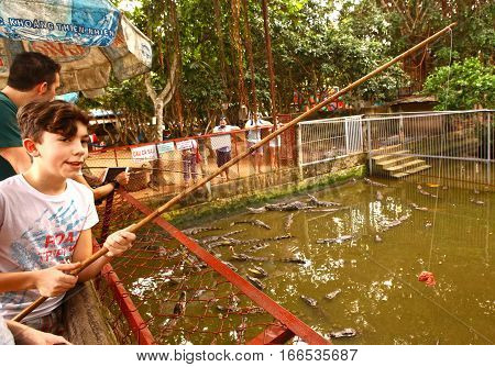 Mekong river Vietnam December 27 2016: Unidentified teen tourist boy feed crocodiles on crocodile farm on one of the islands on Mekong river in Vietnam December 27 2016.