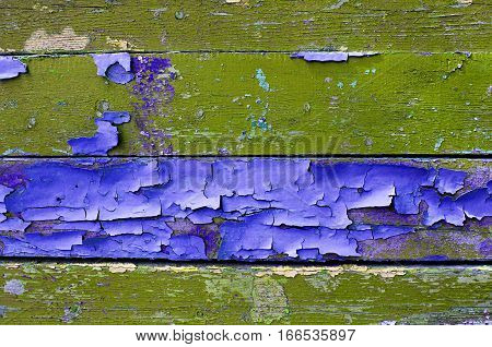 Texture background - old painted wooden surface with peeling purple and green paint. Texture wooden background