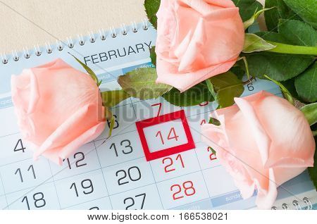 St Valentines day background - roses of light peach color over the calendar with framed St Valentines day date February 14
