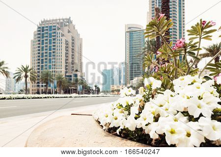 dubai street scene with flowers, empty road and skyscrapers.