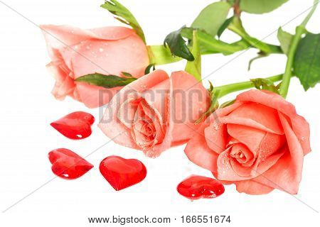 Rose with drops of water and hearts nearby. A pink rose with dew drops on a white background. Near a rose red hearts from glass