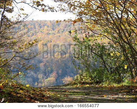 Edge of mountain cliff overlooking beautiful Autumn trees