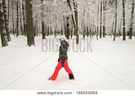 She goes through the deep snow in the winter forest