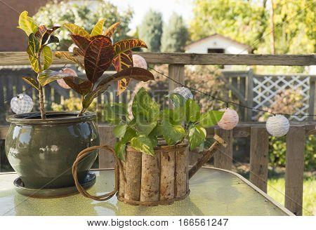 Handmade planter and plants on patio table