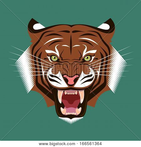 Angry Growling Tiger. Roaring tiger's head. Color vector illustration