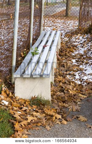 Snow covered dugout bench amidst fallen autumn leaves during off season