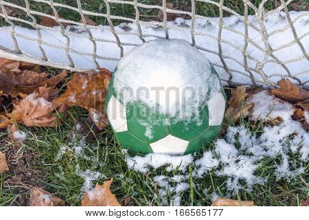 Snow covered green soccer ball and net amidst autumn leaves on the ground