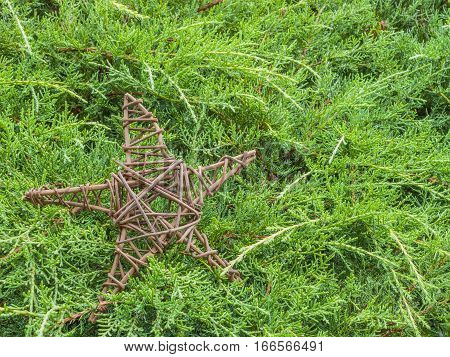 Handmade wooden star lying on pine branches