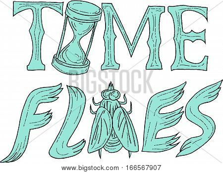 Drawing sketch style illustration of the words text Time Flies with hourglass and fly set on isolated white background.