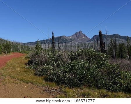 The jagged slopes of Mt. Washington in Oregon's Cascade Mountains with a red cinder road manzanita and burnt trees from a forest fire in the foreground on a sunny summer day.