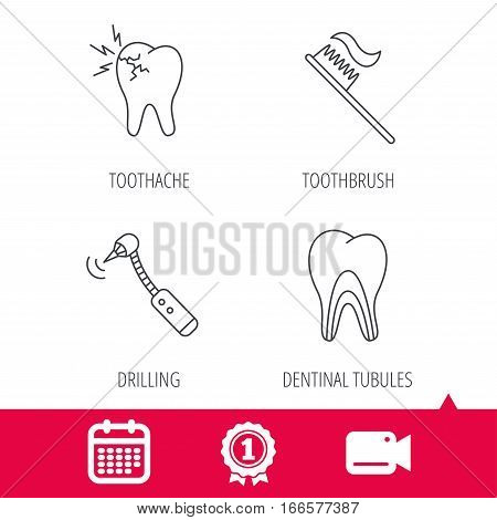 Achievement and video cam signs. Toothache, drilling tool and toothbrush icons. Dentinal tubules linear sign. Calendar icon. Vector