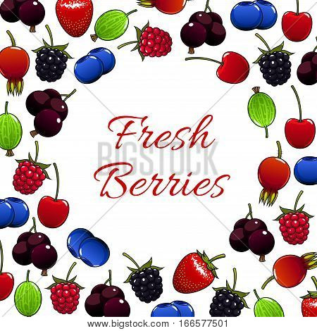 Berries vector poster of fresh juicy and sweet strawberry, raspberry, blackberry, cherry, briar, blueberry, gooseberry, blackcurrant or redcurrant. Fruity berry forest and garden harvest design for jam
