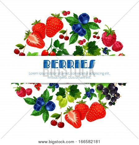 Berries poster of fresh sweet and juicy strawberry, and cherry, raspberry, blackberry and blueberry, black currant or red currant, gooseberry and briar. Forest and garden fruity berry harvest for fruit jam, market or store design