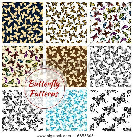 Butterflies pattern. Vector butterfly and moth insects. Exotic swallowtail with flittering wings, tropical monarch butterfly and hawk-moth, flying machaon and cabbage and luna batterfly. Seamless backgrounds set