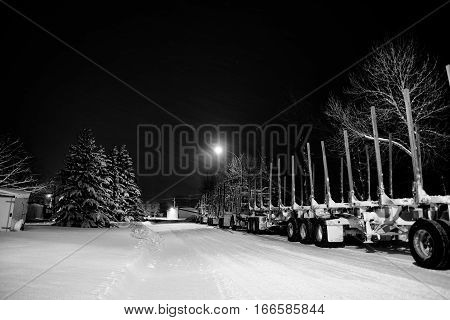 Two eighteen wheel trucks with attached empty log trailers parked along the edge of a street under street lights at night in black and white winter landscape