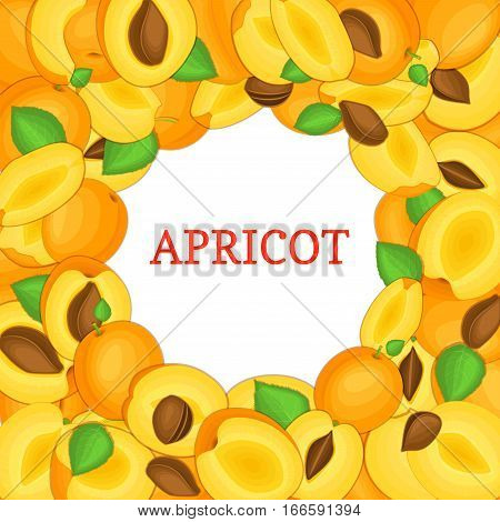 Round colored frame composed of delicious juicy apricot fruit. Vector card illustration. Circle apricots frame. Ripe fresh fruits appetizing looking for packaging design of juice, breakfast food